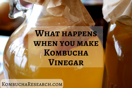 whats-going-on-in-kombucha-vinegar